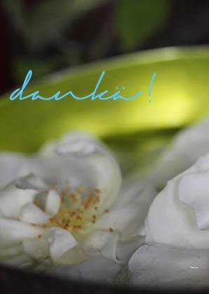 card_dankae
